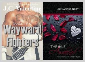 wayward fighters book 1 and 2