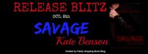 RB savage banner
