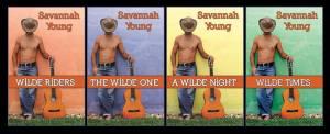4 books wilde rider