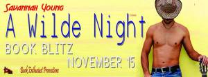 banner a wilde night