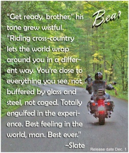 Bear_quotes-slate-bikes