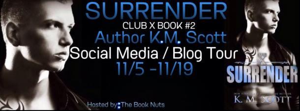blog tour banner km surrender