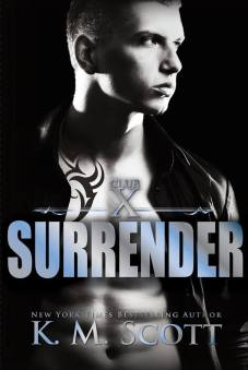 surrender book cover 3book