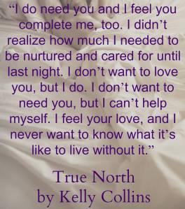 true north teaser 4