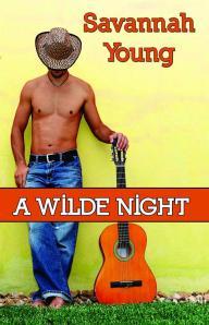 wilde  night cover