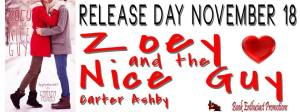 zoey and the nice guy banner