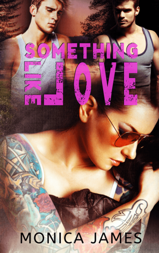 SomethingLikeLove_ebook_Reveal