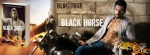BLOG TOUR ~ Black Horse by Addison Kline